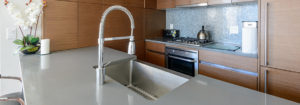 kitchen faucet guide PRO TOPS Charlotte